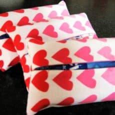 heart-tissue-holder.jpg