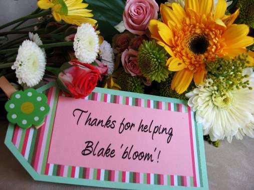 blake-blooms.jpg