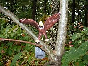 geocaching-michael-the-eagle.jpg
