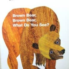 brownbearbook.jpg