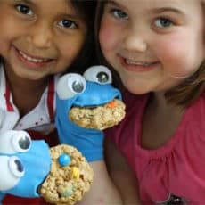 Cookie-Monster-Sock-Puppet-450px.jpg