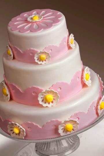 Cricut Cake Giveaway | Skip To My Lou