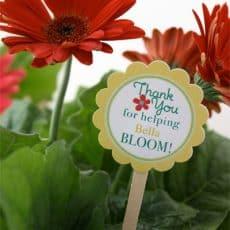Teacher-Appreciation-Flowers