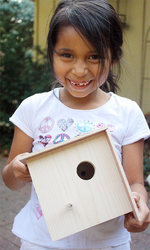 DIY-Birdhouse.jpg