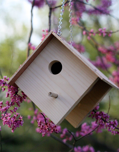 How To Build A Wooden Birdhouse