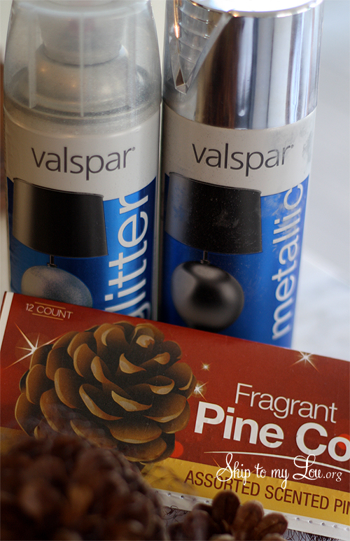 Place pine cones in a box to contain the spray paint and make for