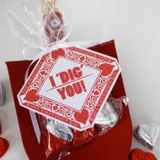 I-Dig-you-Valentine.jpg