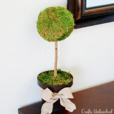 Moss-topiary-tree-2-Crafts-Unleashed.jpg