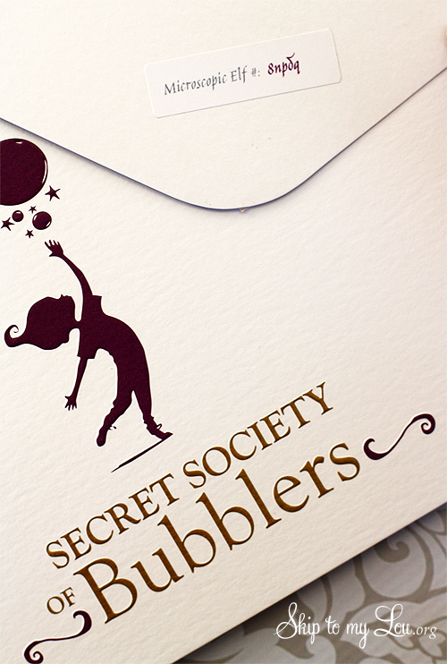 secret society of bubblers