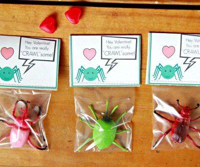 Crawlsome-Valentine-Main.jpg