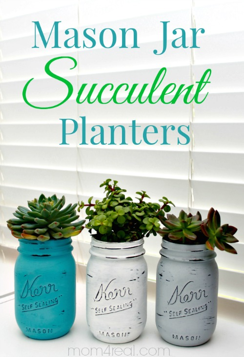 Mason-Jar-Succulent-Planters-Small
