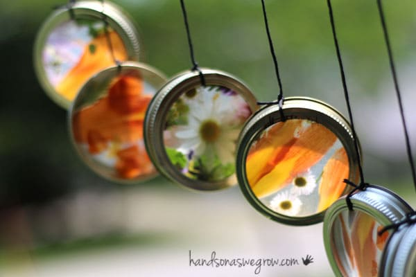 sun catchers in canning rings