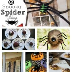 spider-ideas-collage.jpg