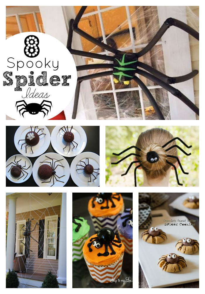 spider ideas collage