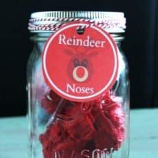 Reindeer-Noses-Mason-Jar-Gift-Idea.jpg