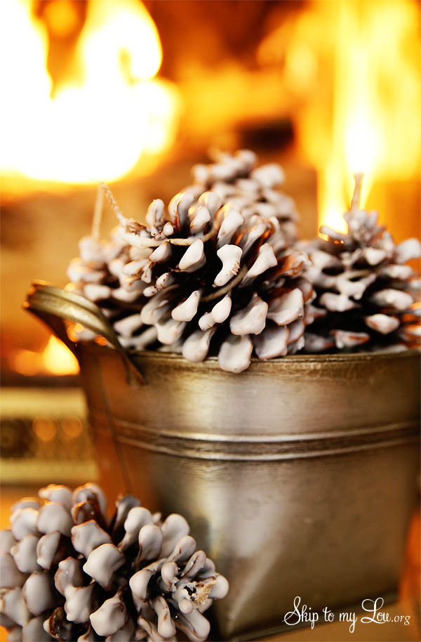 Easy Pinecone Fire Starters