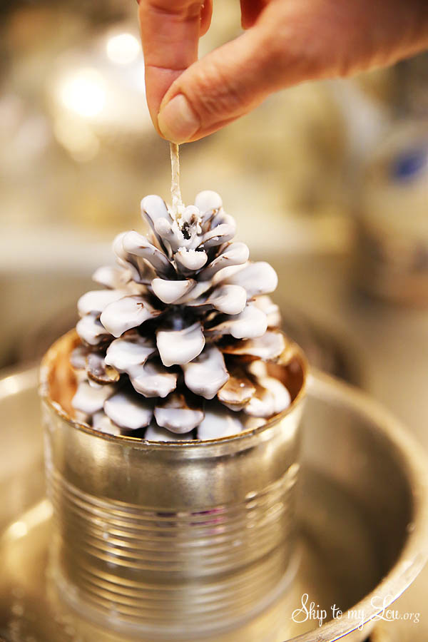 easy pinecone fire start tutorial
