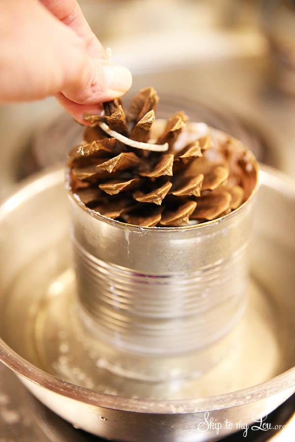 easy pinecone fire starters dipping pinecone