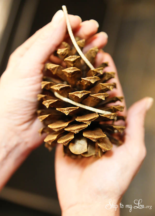 easy pinecone fire starters wrapping wick