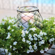 easy-floral-outdoor-centerpiece.jpg