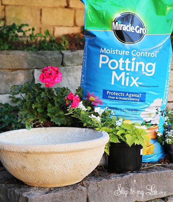 perfect container garden supplies
