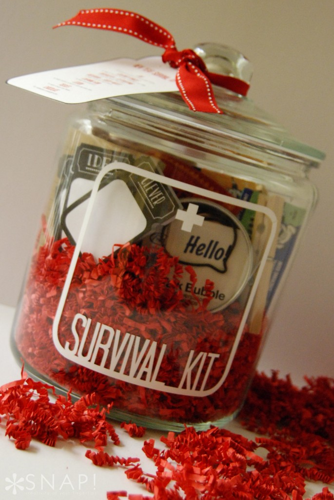 New-Year-Survival-Kit-7-685x1024