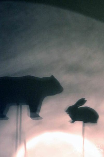 animal-shadow-puppets-for-flashlights.jpg