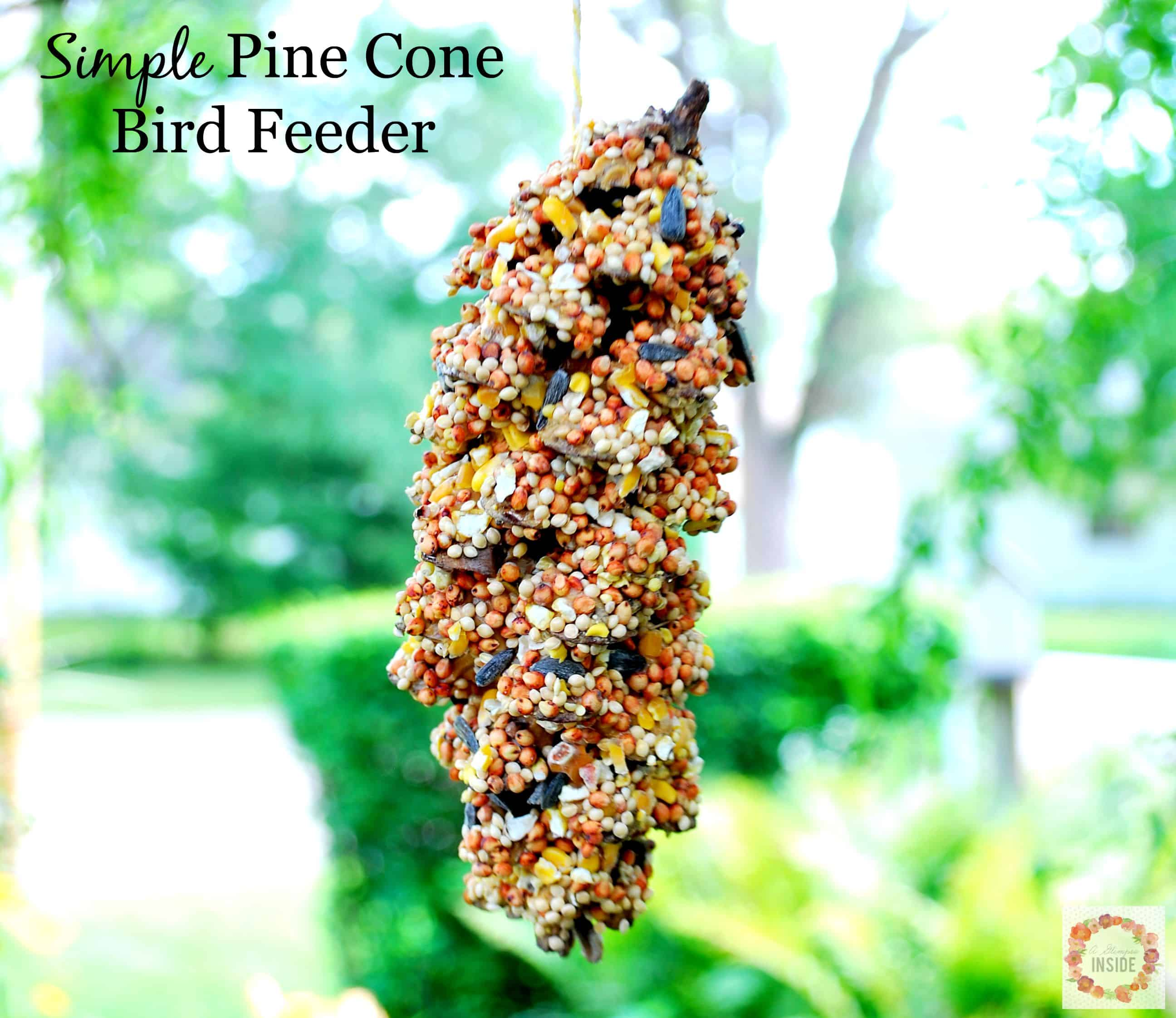 Simple Pine Cone Bird Feeder