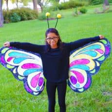 easy-butterfly-costume.jpg