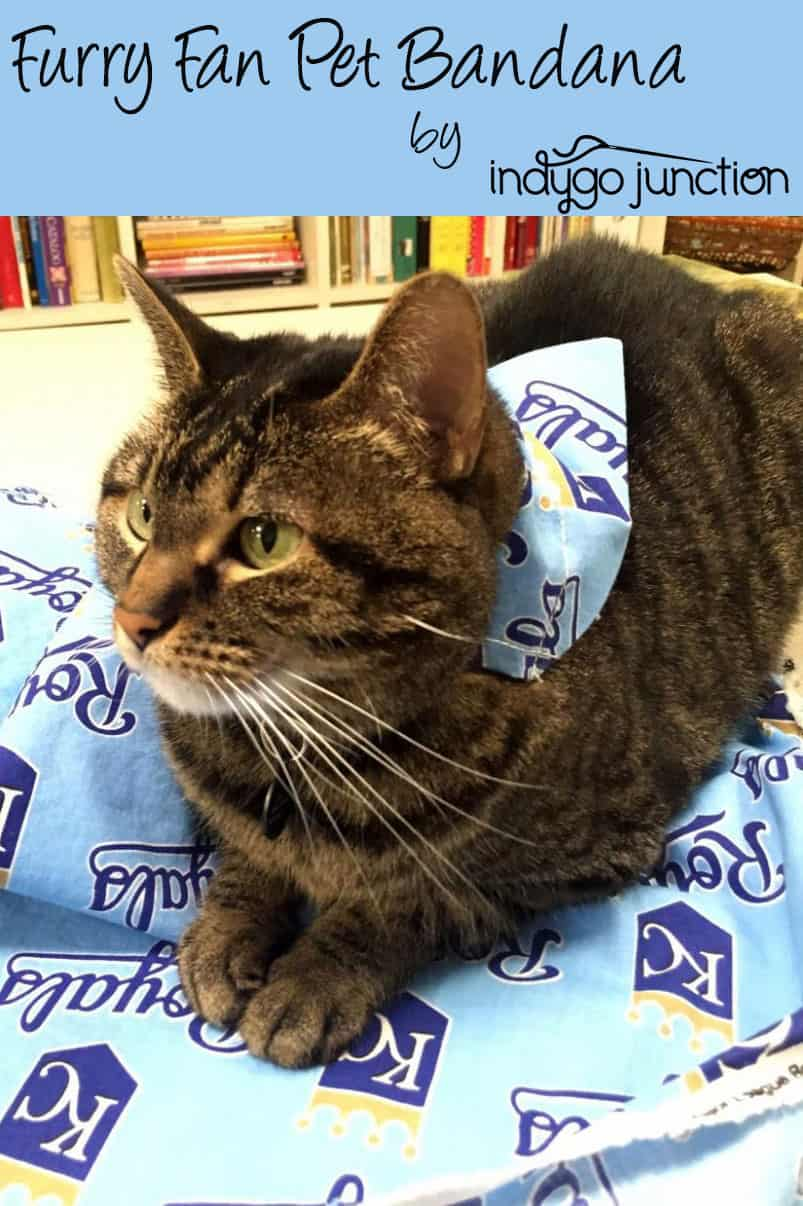 Furry Fan Pet Bandana by Amy Barickman