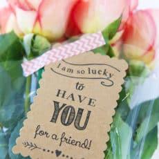 friend-gift.jpg