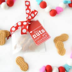 Im-nuts-about-you-printable-handmade-valentine-1024x681.jpg