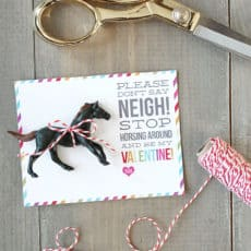 dont-say-neigh-horse-valentines.jpg