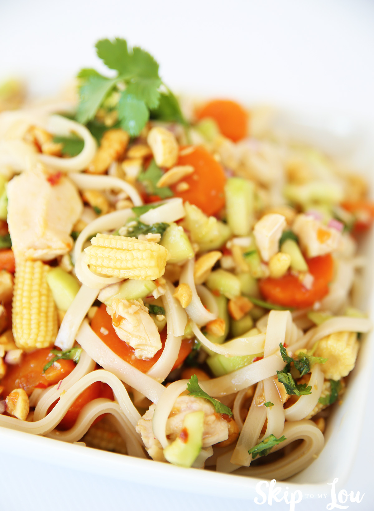Malaysian Tangy Rice Noodle Salad