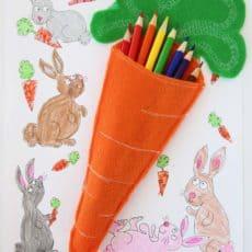 felt carrot pouch