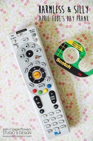remote-control-300x451