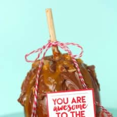 teacher-appreciation-apple-treat-with-free-printables-a-girl-and-a-glue-gun.jpg