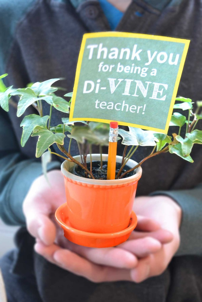 di-VINE teacher appreciation gift that is simple and easy with free printable.