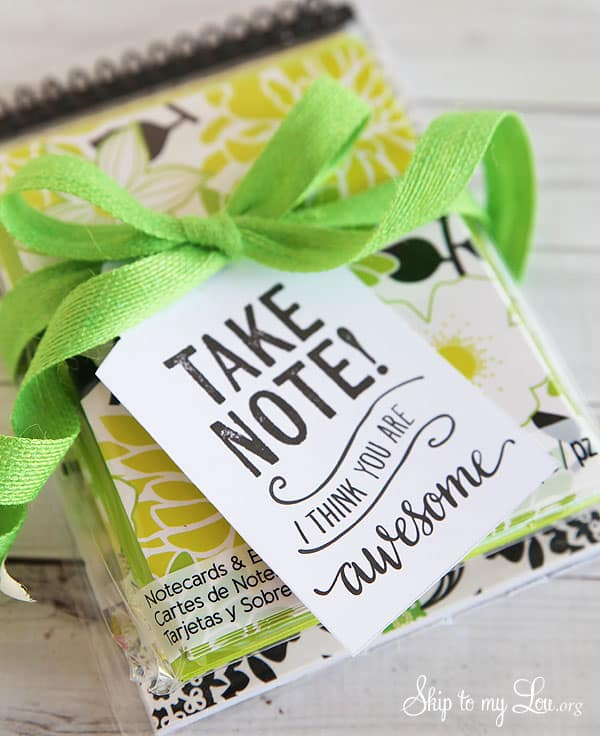 "yellow, white and spring green note cards and envelopes package in clear plastic bag with a printable tag that says, ""take a note i think you are awesome"" attached with a spring green ribbon"