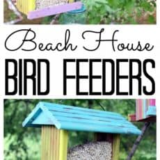 bird-feeders-painted-like-a-beach-house-768x2092.jpg
