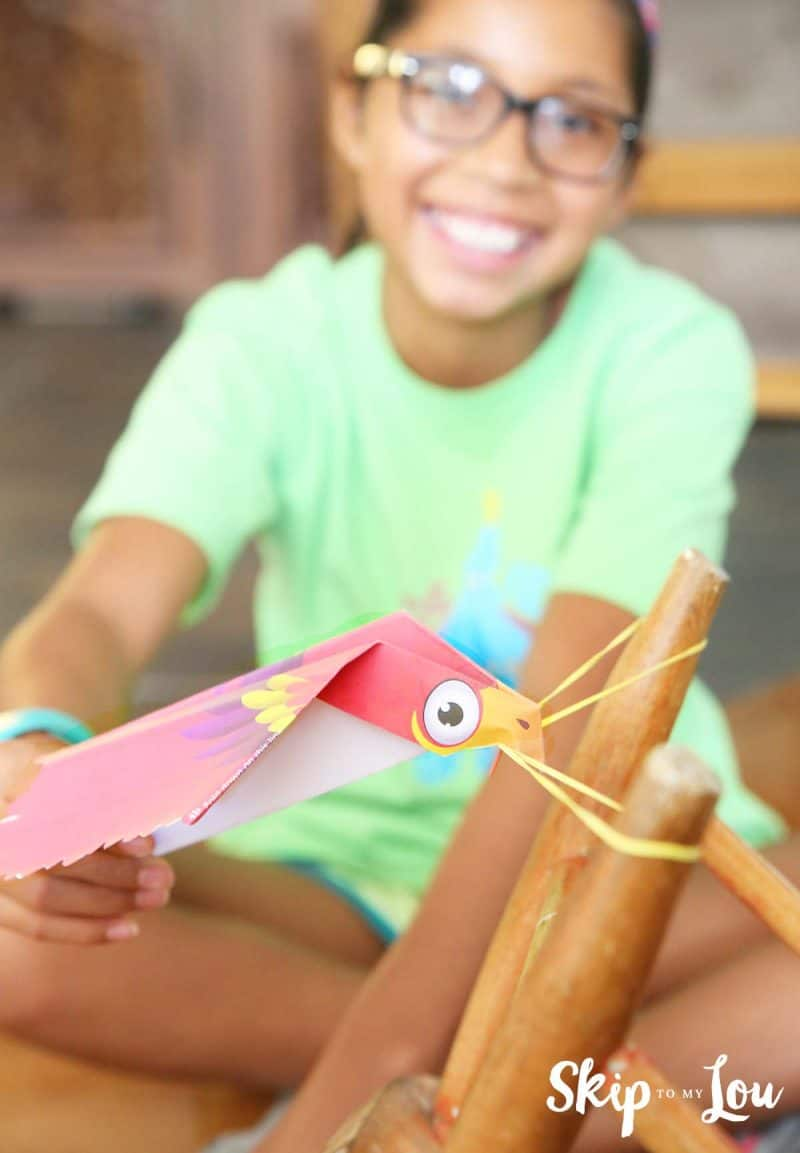 flying bird with rubberband launcher