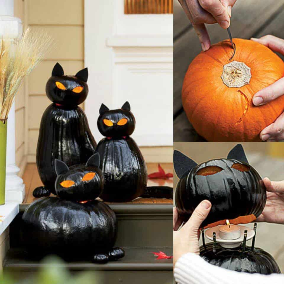black-cat-pumpkins