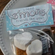 smore supplies with tag i need smore friends like you valentine