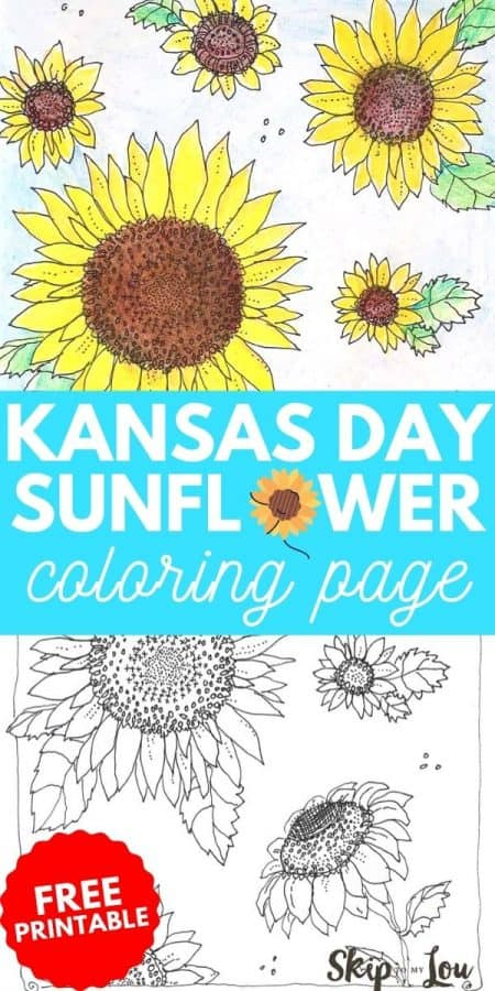sunflower coloring page PIN