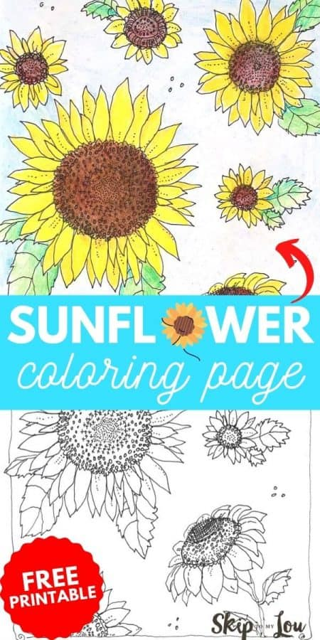 sunflower coloring page printable PIN