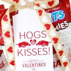 Razorbacks Hogs Kisses Valentine Gift Tag