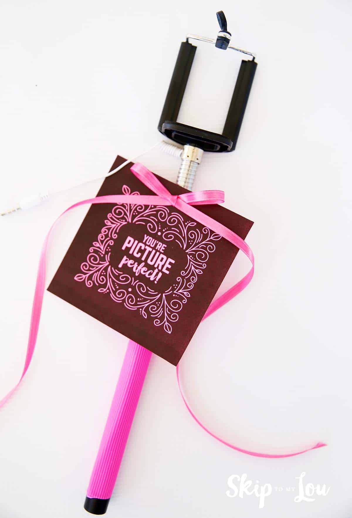 Selfie stick gift with free printable gift tags