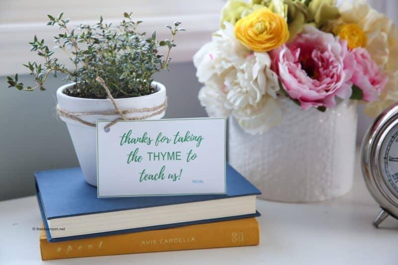 Herb Plants Teacher Gift