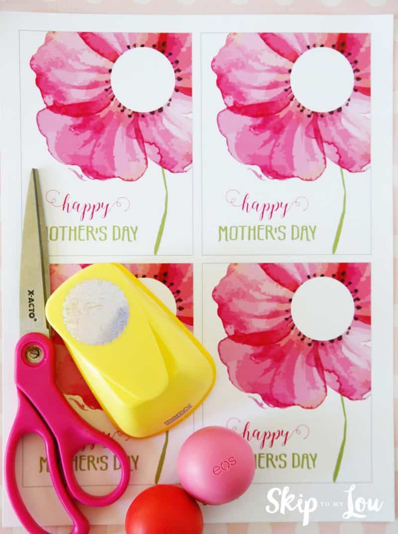 Mothers day eos gift supplies