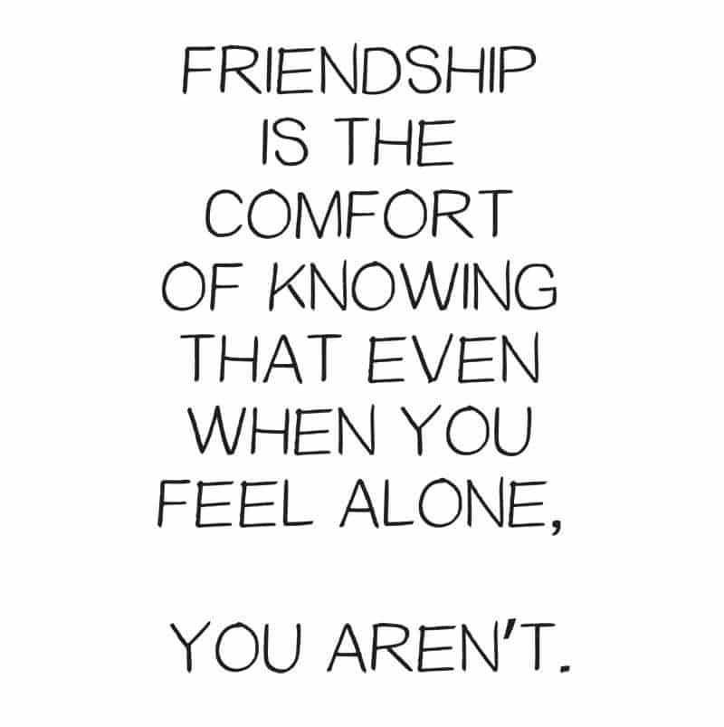 friendship is knowing you are not alone friendship quotes